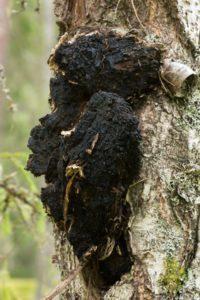 méhviasz krém propolissal egészséges a pikkelysömörről